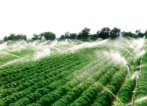 农田生产 手绘图